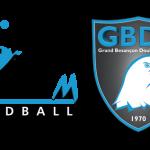 logos-Acceuil-ESBM-GBDH