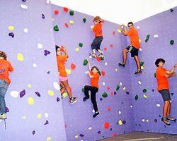 l-un-des-murs-d-escalade-de-la-salle-gaston-comes-fait-le_257589_657x427p